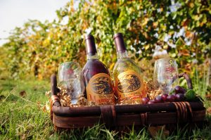 Morris Vineyard & Tennessee Mountain View Winery LLC