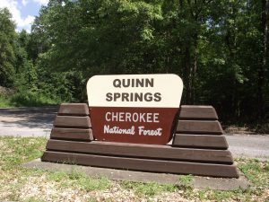 Quinn Springs